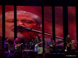Los Lobos and Eric Clapton